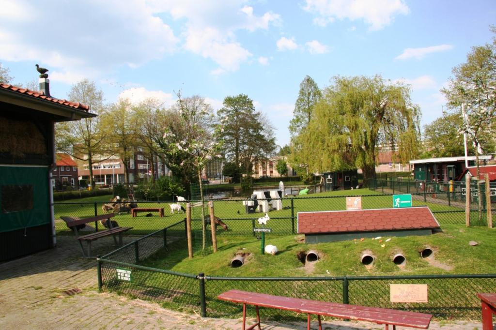 Kinderboerderij-de-plantage-Alblasserdam-dieren-60